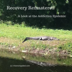 Recovery Remastered - Visions Applied